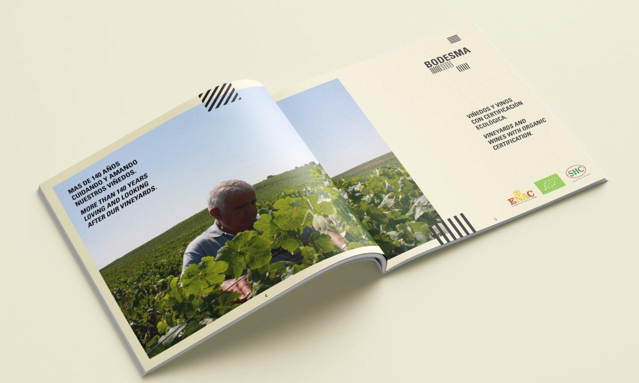 Diseño editorial de vino